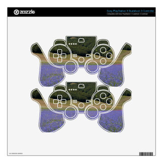 Blue colored fields with cornflowers PS3 controller decal