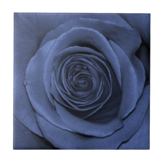 Blue Colored Rose, Gorgeous! Tile