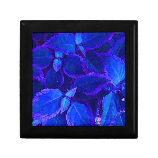 Blue colorized plant coleus keepsake boxes