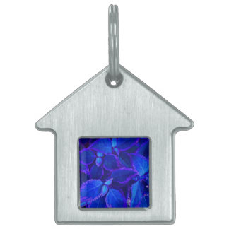 Blue colorized plant coleus pet tags