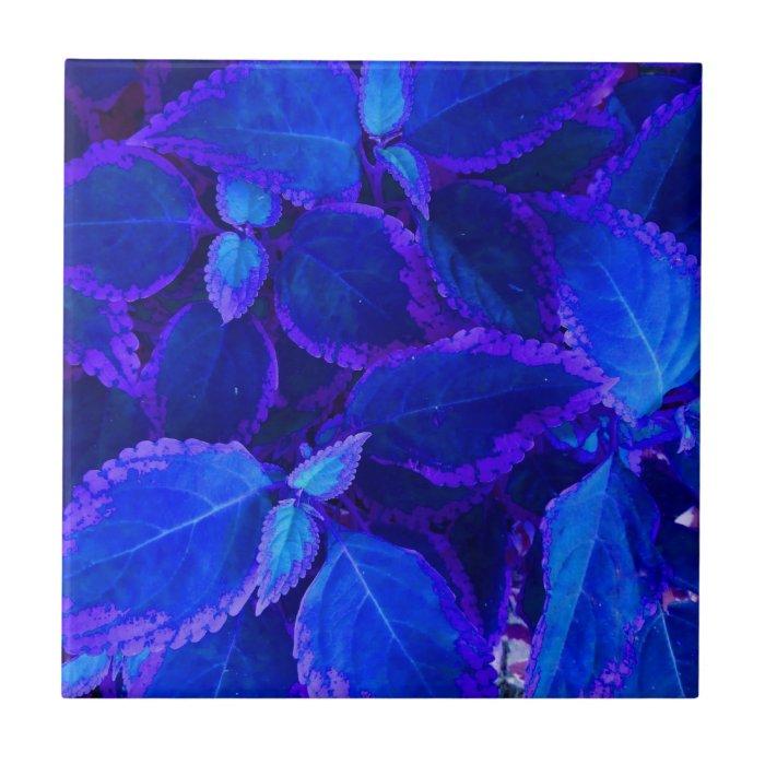 Blue colorized plant coleus tile
