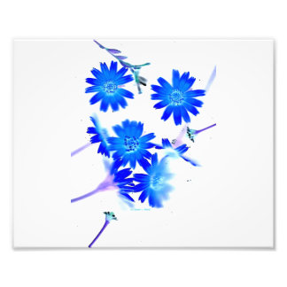 Blue colorized wild flowers scattered design photograph
