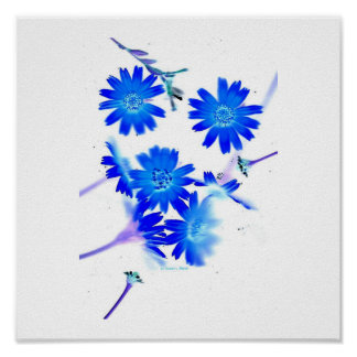 Blue colorized wild flowers scattered design poster