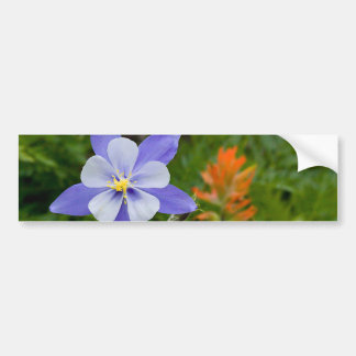 Blue Columbine Bumper Sticker
