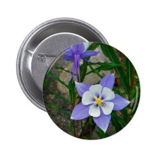 Blue columbine pins