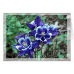 Blue Columbine Thank You Card