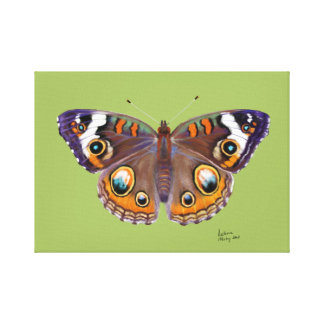 Blue Common Buckeye Butterfly Realistic Painting Canvas Print