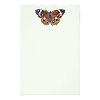 Blue Common Buckeye Butterfly Realistic Painting Stationery