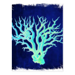 blue coral beach rustic shabby chic nautical postcard