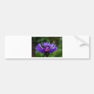 Blue Cornflower Flower Blossoms Peace Love Destiny Car Bumper Sticker
