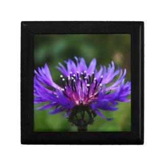 Blue Cornflower Flower Blossoms Peace Love Destiny Keepsake Box