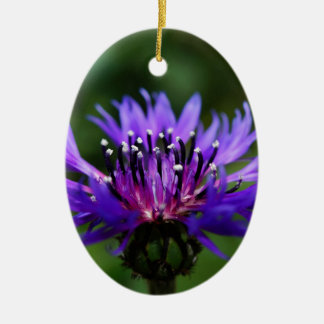 Blue Cornflower Flower Blossoms Peace Love Destiny Ornament