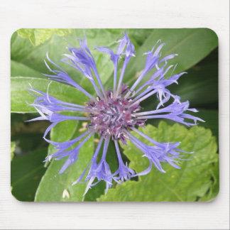Blue Cornflower Mousepad