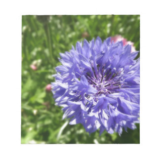 Blue cornflower notepad