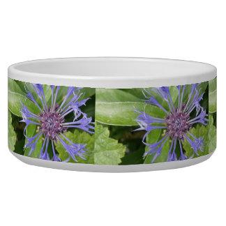 Blue Cornflowers Dog Bowl