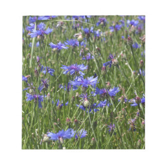 Blue cornflowers in a field notepad