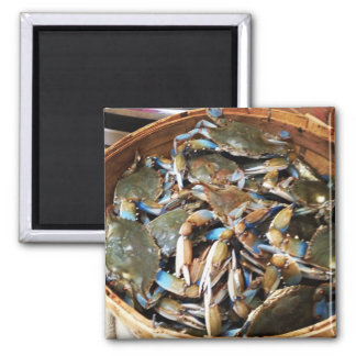 Blue Crab Bushel 2 Inch Square Magnet