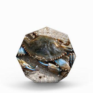 Blue Crab Crawling Acrylic Award