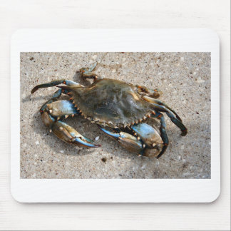 Blue Crab Crawling Mouse Pad