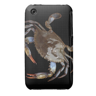 Blue Crab iPhone 3 Cases