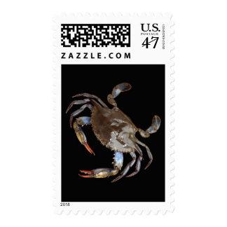 Blue Crab Postage