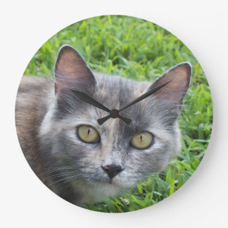 Blue Cream -Tortie Kitty Wall Clock