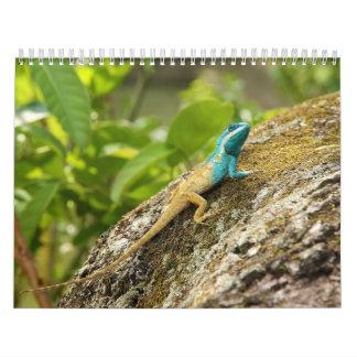 Blue-Crested Lizard Calotes Mystaceus Wall Calendar