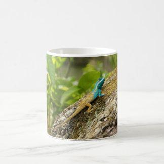 Blue-Crested Lizard Calotes Mystaceus Classic White Coffee Mug