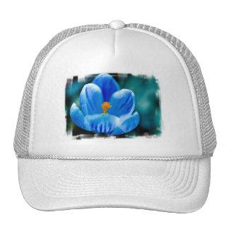 Blue Crocus Baseball Hat