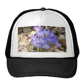 Blue Crocus Trucker Hats
