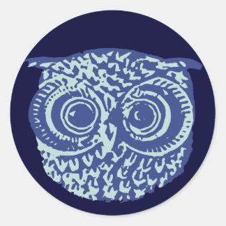 Blue cute owl picture classic round sticker