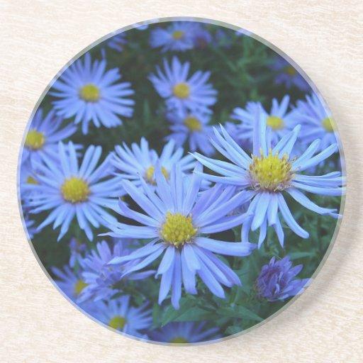 Blue Daisies Beverage Coasters