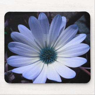 Blue Daisy Flower Mousepad