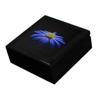 Blue Daisy Gerbera Flower on a Black background Jewelry Box