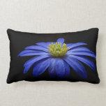 Blue Daisy Gerbera Flower on a Black background Throw Pillows