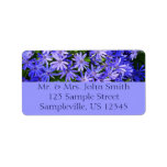 Blue Daisy-like Flowers Nature Photography Label