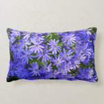 Blue Daisy-like Flowers Nature Photography Lumbar Pillow