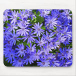 Blue Daisy-like Flowers Nature Photography Mouse Pad