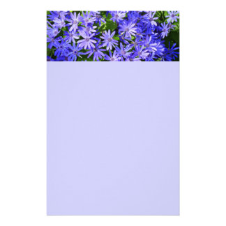 Blue Daisy-like Flowers Nature Photography Stationery