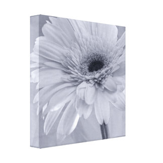Blue Daisy Wrapped Canvas Print