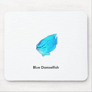 Blue Damsel Fish, Blue Damselfish Mouse Pad
