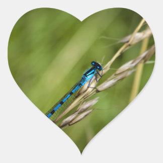 Blue Damselfly macro Heart Sticker