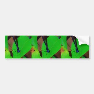 Blue Damselfly on a green leaf. dragon Bumper Sticker
