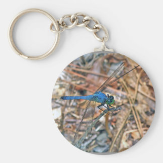 Blue Dasher Dragonfly Coordinating Items Keychain