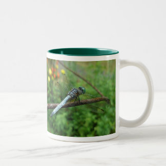 Blue Dasher Dragonfly Coordinating Items Two-Tone Coffee Mug