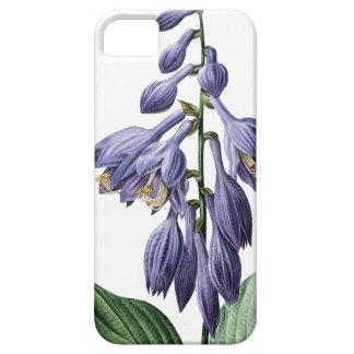 Blue daylily vintage Redoute illustration iPhone SE/5/5s Case