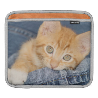 Blue Denim Orange Kitty Ipad Sleeve