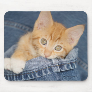 Blue Denim Orange Kitty Mousepad