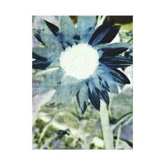 Blue Denim Sunflower Canvas Canvas Print