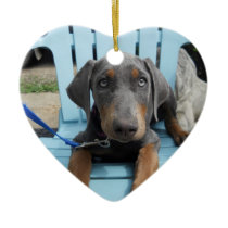 Blue Doberman eyes Ceramic Ornament